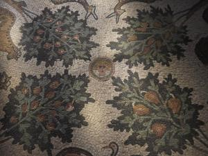 A Madaba mosaic