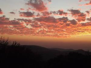 The view from the Ajloun reserve