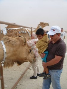 Our first trip to Camel festival