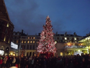 Chrsitmas tree at Covent Garden