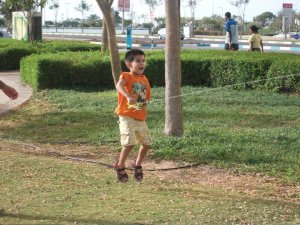 A spot of kite flying in the Corniche park
